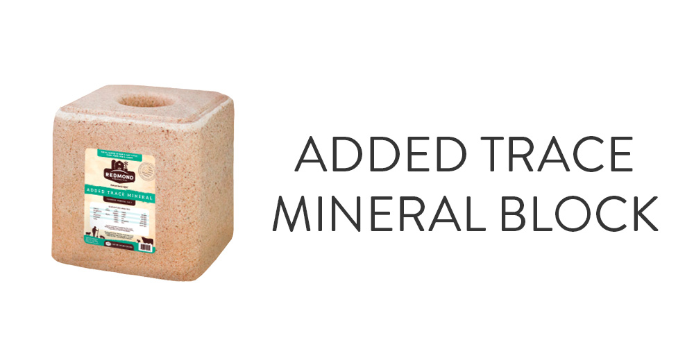 Added Trace Mineral Block