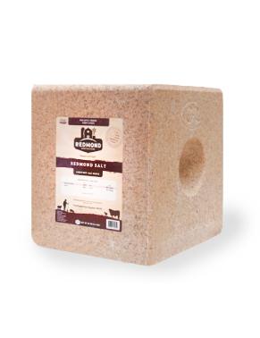 Redmond Salt Block