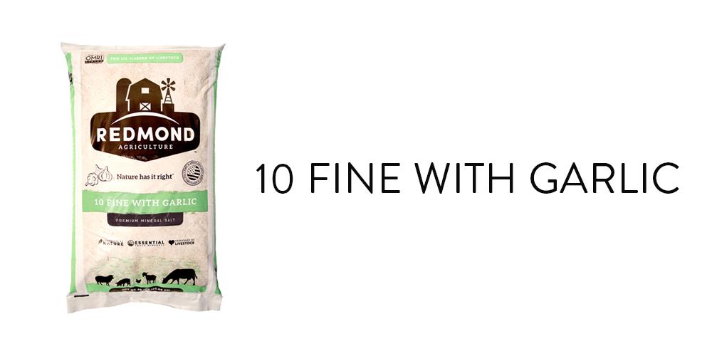 10 Fine With Garlic Words