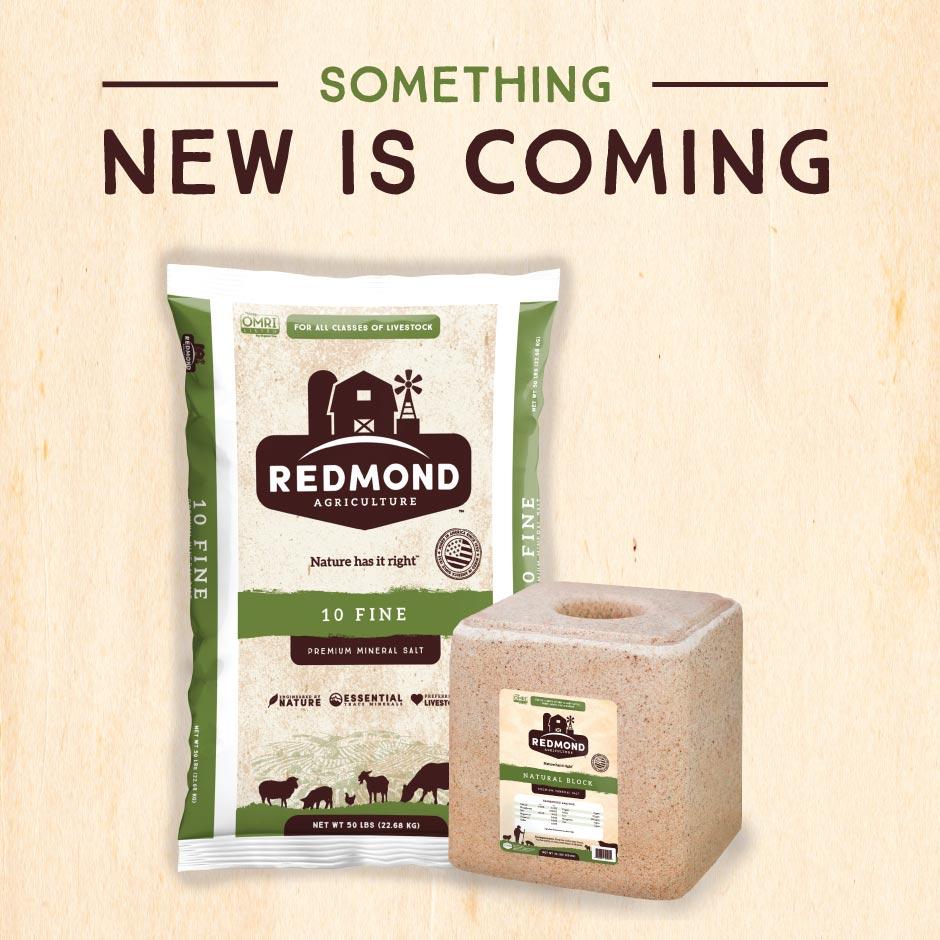 Redmond Rebrand Post 1