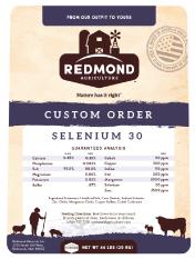 Redmond Selenium 30  Premium Mineral Salt Block