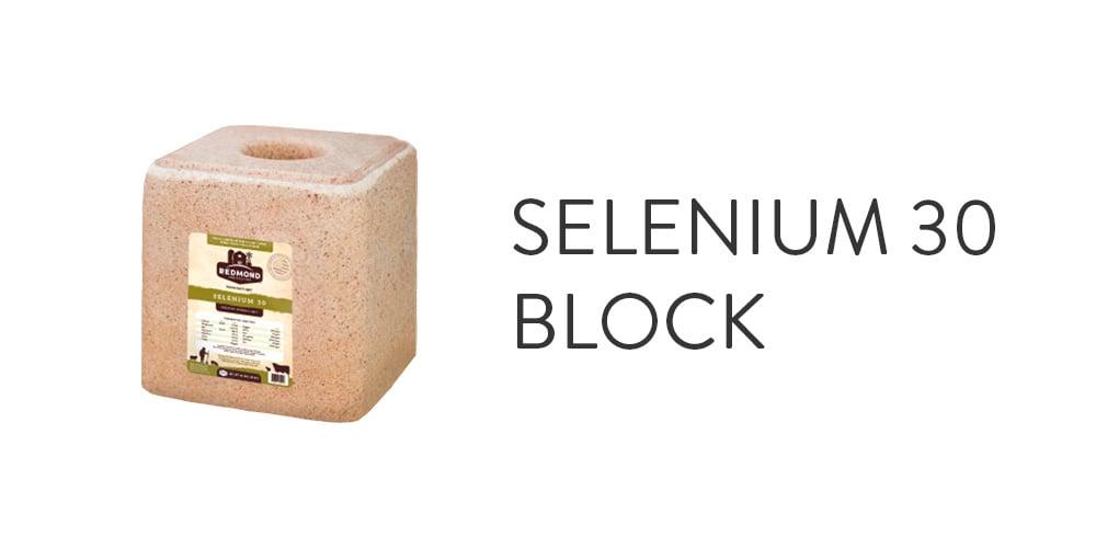 Selenium 30 Block