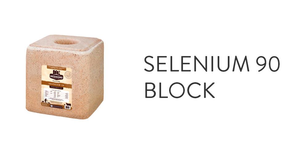 Selenium 90 Block